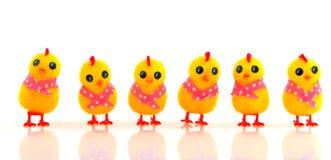 цыпленоки пасха смешная Стоковые Изображения RF