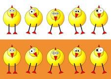 цыпленоки пасха Стоковые Изображения RF