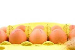 цыпленок коробки eggs желтый цвет 10 Стоковая Фотография RF
