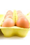 цыпленок коробки eggs 10 Стоковое фото RF