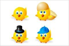цыпленок круглый Стоковые Фото