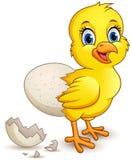 Цыпленок мультфильма маленький с яйцом иллюстрация вектора