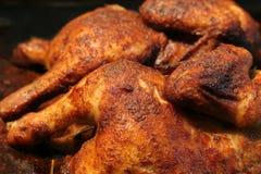 цыпленок наслаждается жаркым Стоковая Фотография