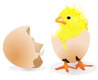 цыпленок пасха иллюстрация вектора