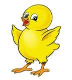 цыпленок счастливый Стоковые Фотографии RF