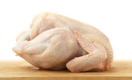 цыпленок сырцовый Стоковое фото RF
