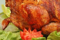 цыпленок Стоковая Фотография RF