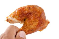 Цыпленок Drumstick руки зажаренный удерживанием Стоковое Изображение