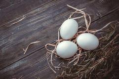цыпленок eggs белизна Стоковые Фото