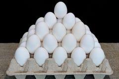 цыпленок eggs белизна стоковые изображения
