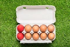Цыпленок eggs в подносе картона на зеленой траве Стоковая Фотография