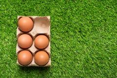 Цыпленок eggs в подносе картона на зеленой траве Стоковое Изображение RF