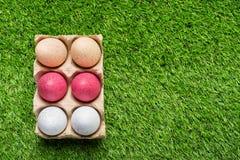 Цыпленок eggs в подносе картона на зеленой траве Стоковые Фото