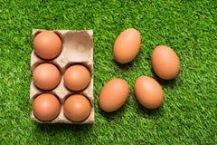 Цыпленок eggs в подносе картона на зеленой траве Стоковое Изображение