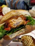 Цыпленок Fil a стоковые изображения rf