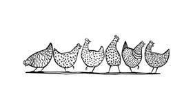Цыплята нарисованные рукой Стоковое фото RF
