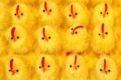 Цыпленоки пасхи как предпосылка Стоковые Изображения