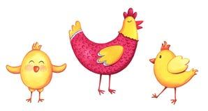 Цыпленок акварели и элементы цыпленоков Иллюстрации покрашенные рукой изолированные на белой предпосылке