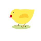 Цыпленок изображения Стоковое Изображение