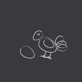 Цыпленок или рентгенографирование рентгеновского снимка яичка Стоковые Изображения