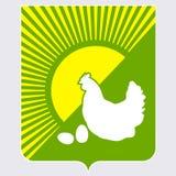 Цыпленок и яичка Стоковые Изображения
