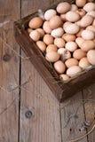 цыпленок коробки eggs деревянное стоковые фото