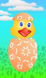 Цыпленок пасхи как раз насиженный от яичек Стоковое Фото