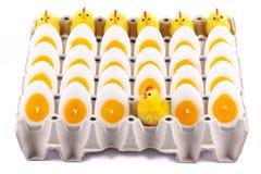 Цыпленок пасхи, свечи которые выглядеть как яичка Стоковое Фото