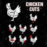 Цыпленок режет комплект шаблона вектора Стоковые Фотографии RF