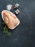 цыпленок свежий стоковые изображения