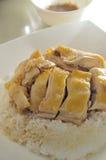 цыпленок солёный Стоковое фото RF