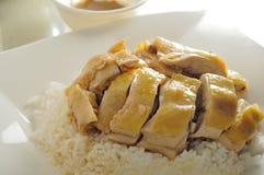 цыпленок солёный Стоковая Фотография RF