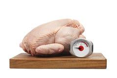 цыпленок сырцовый Стоковая Фотография