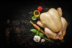 цыпленок сырцовый Стоковые Фотографии RF