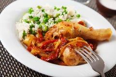 Цыпленок с рисом и томатным соусом стоковое изображение rf