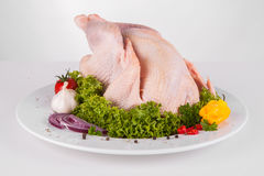 Цыпленок с украшением стоковая фотография rf