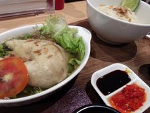 Цыпленок Хайнань Стоковая Фотография RF