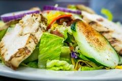 цыпленок шара предпосылки изолировал белизну салата риса частей персика петрушки стоковые фото