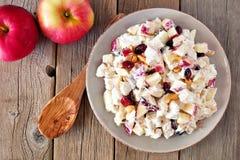 Цыпленок, яблоки, гайки и клюквы saladwith осени, над древесиной Стоковое Изображение RF