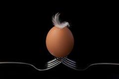 Цыпленок eggs на натюрморте вилки на черной предпосылке Стоковая Фотография