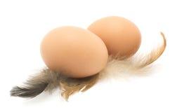 Цыпленок eggs, пер, изолированные на белизне Стоковые Фото