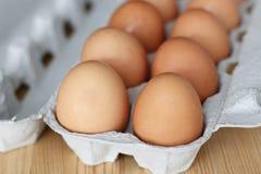 цыпленок eggs свежая Стоковое Фото