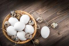 цыпленок eggs триперстки Стоковые Изображения RF