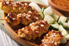 Цыпленок satay с соусом арахиса на макросе плиты горизонтально Стоковые Изображения RF