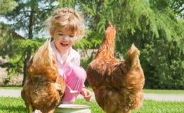 Цыплята девушки подавая стоковые изображения rf