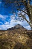 Чабан Etive: Красивый pyramidal пик Mor Buachaille Etive в гористых местностях Шотландии стоковое фото