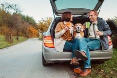 Чаепитие в тележке автомобиля - любящая пара с собакой сидит в truc автомобиля Стоковое фото RF