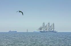Чайка летания и высокорослый корабль Стоковые Изображения RF