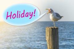 """Чайка кричит """"праздник """"на деревянном столбце на seashore бесплатная иллюстрация"""