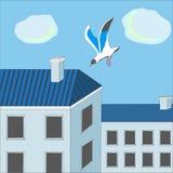 Чайка над городком Стоковые Фото